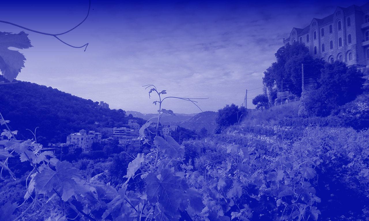 SALON <br/>Samedi 6 oct.● 15 h 00-18 h 00<br/>● Tribu Festival● <br/> Réunion Tu Peux R&rsquo;Boire&nbsp;: <br/>Fête des vins vivants <br/>et des musiques libres