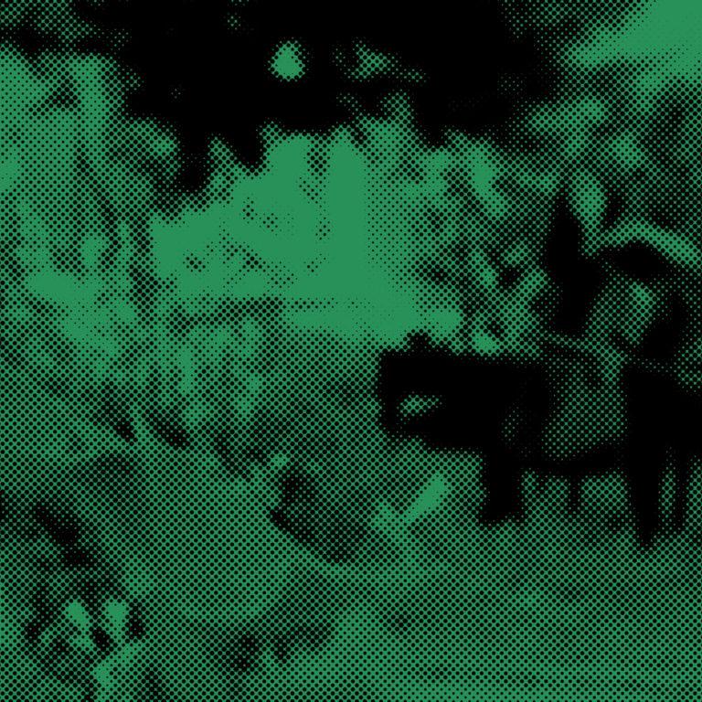 <br>SAISON ICI L'ONDE<br> <br> CONCERTS <br/> 17 juin – 4 juillet <br/>  ● Sonic Bloom  ● <br>Concerts, performances et installations dans les jardins partagés de Dijon